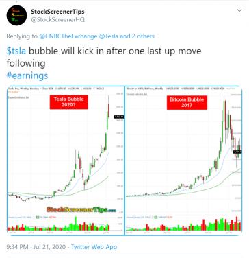 twitter post tesla bubble